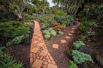 Ganna Walska Lotusland, botanical garden in Montecito