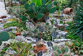 Cactus Garden in Balchik