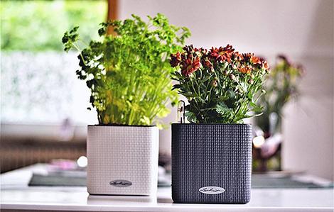 LECHUZA - planters & garden furniture