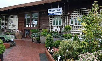 Ashwood Nurseries - traditional garden shop