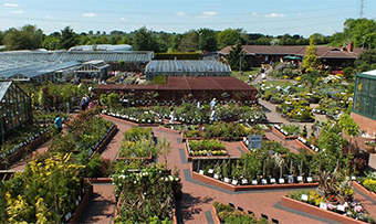 Ashwood Nurseries - traditional plant nursery and garden centre