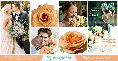 Online flower wholesale - Magnaflor