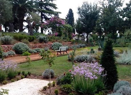 Garden Designer - Elaionia Landscapes Greece